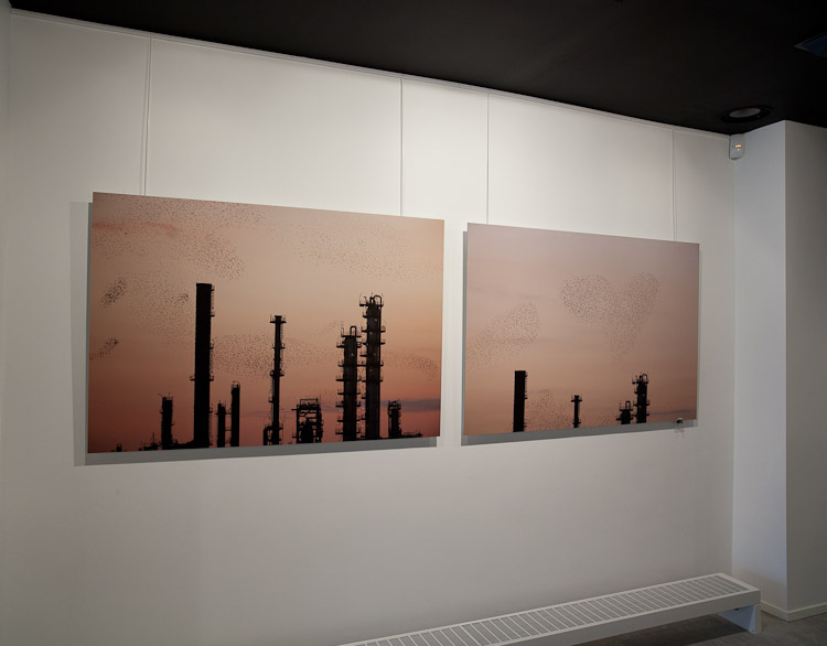 Refinery Flock (150x100cm) DIBOND Mount