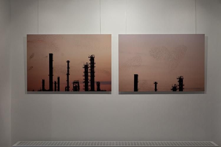Refinery Flock (150x100cm) DIBOND