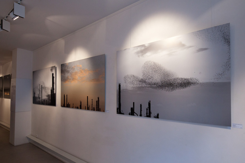 attractions-massimo-cristaldi-vernissage-09